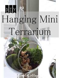 hometocottage com diy hanging terrarium