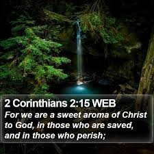 2 Corinthians 2:15 WEB - For we are a sweet aroma of Christ to God, in