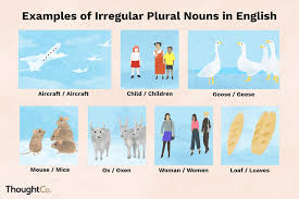 Singular And Plural Nouns Chart The 100 Most Common Irregular Plural Nouns In English