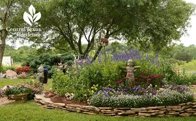 raised bed spring flower garden central texas gardener