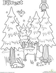 Small Picture Forest Coloring Page Worksheets Camping and Camping theme