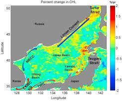 Analysis Of The Timing Of Phase Changes In The Chlorophyll