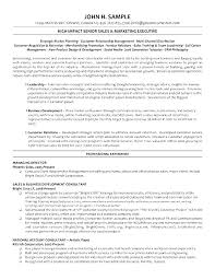 Sales And Marketing Resume Samples Impressive Best Executive Resume Examples Wakeboardingsupplies