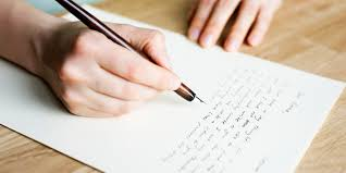 essays on animal cruelty animal cruelty essays short essay on  animal cruelty canadian horse defence coalition s blog action alert act now to comment on cfia