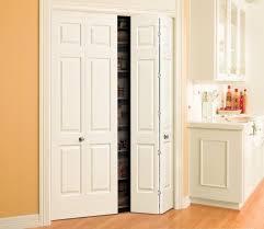 bifold doors tropical closet
