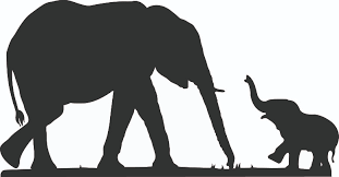 Baby Elephant Drawings Silhouette Of Baby Elephant Great Free Clipart Silhouette