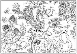 colouring pages of animals. Delighful Colouring Colouring Pages Of Animals  For Animals I