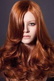 Cinnamon Hair Color Chart Cinnamon Hair Color Light Dark Chart Formula Caramel