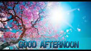 Bright Good Afternoon Beautiful Greetings Best Wishes Wallpaper Whatsaap Video