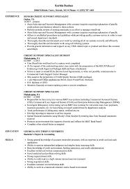 Credit Specialist Sample Resume Credit Support Specialist Resume Samples Velvet Jobs 1
