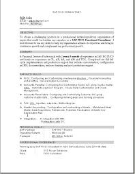 Best Looking Resume Format Amazing Tally Experience Resume Format Resume Invoice