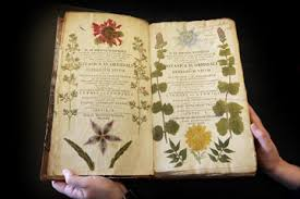 this rare 18th century book on botany is on display at the herbarium library of london s