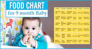 food chart for 9 months baby food