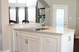 clean white kitchen traditional kitchen dallas