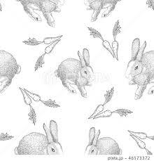 うさぎ 動物 イラスト モノクロのイラスト素材 Pixta