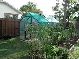 florida vegetable gardening. The Backyard Vegetable Garden Before Florida Gardening E