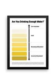 Framed Urine Color Chart Pee Color Chart Water Intake