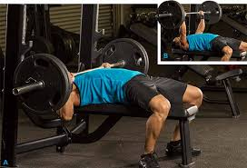 Best 25 Bench Press Ideas On Pinterest  Pectoral Exercises Increase Bench Press Routine