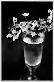 1000 images about Black and White on Pinterest