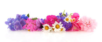 Image result for images of flower garland