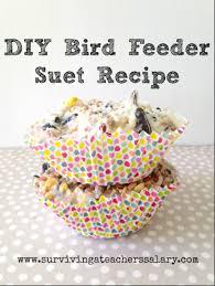 bird suet recipe screen shot 2016 05 04 at 112352 am
