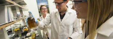 Chemical Engineer Job Description Adorable Chemical Engineering Washington University In St Louis Engineering