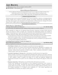 examples of resumes human resources resume examples resume professional writers in examples of professional resumes human resource resume template