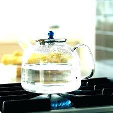 primula stove top teapot cute stovetop best tea kettle recall kettles glass