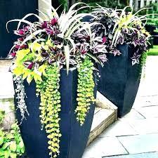 large patio planters cinematoco large outdoor planter ideas big flower garden ideas