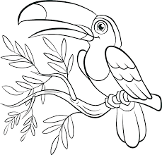 Bird Nest Coloring Page Bird Coloring Sheet Able Empty Birds Nest