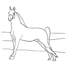 Top 55 Free Printable Horse Coloring Pages Online
