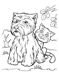 Small Picture Excellent Dog And Cat Coloring Pages Inspiring 5578 Unknown