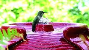 solar powered hummingbird bird bath hummingbird birdbath fountain bird bath taking a in stock footage clip solar powered hummingbird bird bath