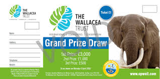 Prize Draw Tickets Book Of 10 Raffle Tickets Uk Only Operation Wallacea