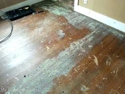 remove glued down carpet glue down carpet adhesive glue hardwood floor remove glued carpet padding concrete