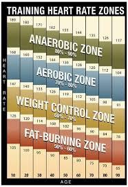 Heart Rate Zone Chart Training Heart Rate Zones Chart Modern