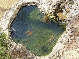 garden pond liners. Pond Liners Garden
