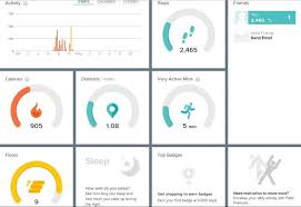 Fitbit Chart Fitbit Activity Chart Bucket List Publications