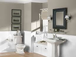 bathroom paint colorsDownload What Color To Paint Bathroom  monstermathclubcom