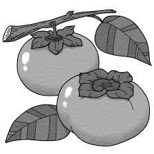 柿のイラスト 季節行事の無料イラスト素材集