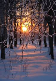 winter backgrounds tumblr iphone. Snow Winter And Sun Image With Backgrounds Tumblr Iphone