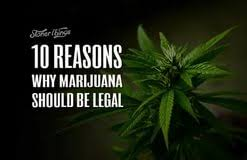 should marijuana be legalized essay paper world out cell should marijuana be legalized essay paper