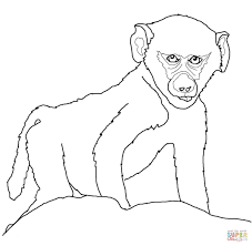 Small Picture Baby animals coloring pages Free Printable Pictures
