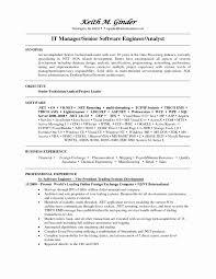 Oil And Gas Resume Format Unique Sample Leasing Consultant Resume