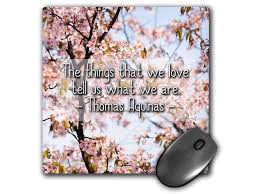 Cherry Blossom Backdrop 3drose Alexis Design Quotes Love Thomas Aquinas Quote The Things That We Love Cherry Blossom Backdrop Mousepad Mp_303432_1 Newegg Com