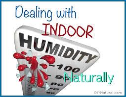 indoor humidity in house