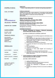 Auditor Resume Examples 65 Images Audit Manager Hotel Night