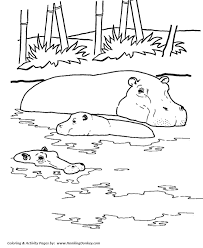 Small Picture Wild Animal Coloring Pages Hippopotamus Coloring Page River