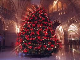 Christmas tree, Ottawa, 2016