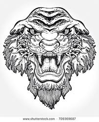 lion s portrait made in an old stylized tattoo vector ilration for coloring book